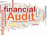 Financial audit is bone background concept