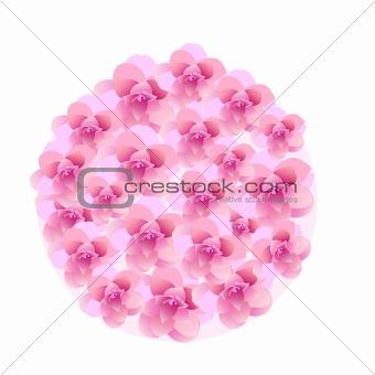 camellia ball