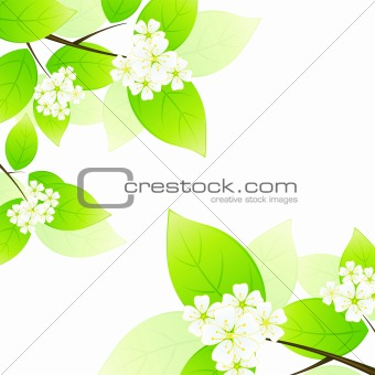 Green leaves and flowers