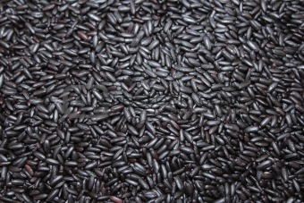 Black Purple Rice Background
