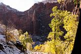 Zion National Park after the first snow