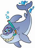 Shark snorkel diver