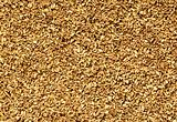 natural oat grain