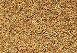 natural oat grain