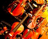 Violins hung on a wall