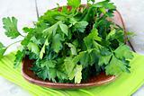 green, organic parsley in a cup on a napkin