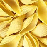 conchiglioni pasta shells