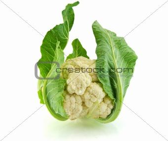 Isolated fresh Cauliflower