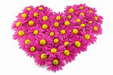 pink flowers in a shape of a heart