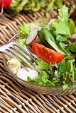 closeup of fresh mixed salad