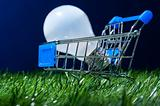 shopping cart in grass