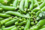 2646 Green peas(51).jpg