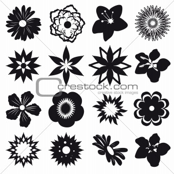 A set of silhouettes of flowers