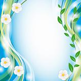 Summer background with white flowers
