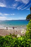 Coast panorama - Wellington, New Zealand