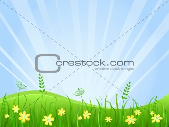 Beautiful green meadow scene