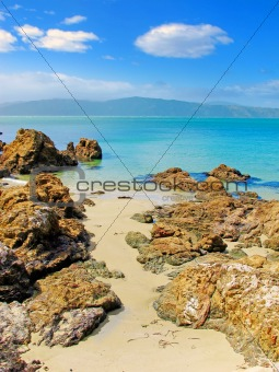 Wonderful beach - New Zealand