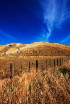 Rolling hills - New Zealand