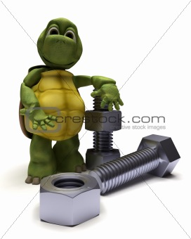 tortoise with a nut and bolt