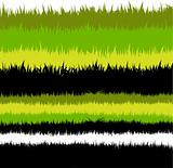Detailed Vector Grass Background
