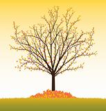 Fall vector tree from seasonal set