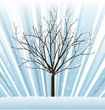 Winter vector tree from seasonal set