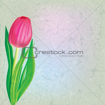 abstract floral illustration with red tulip