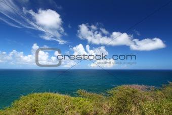 Beautiful coastline of Saint Kitts
