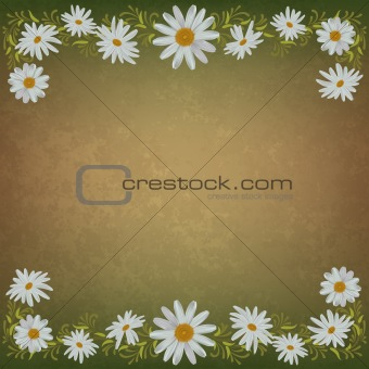 abstract grunge floral background with chamomiles
