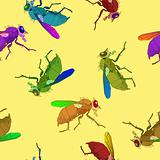 flies pattern