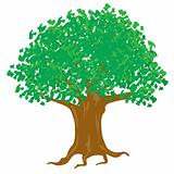 Illustration tree with green foliage on white background