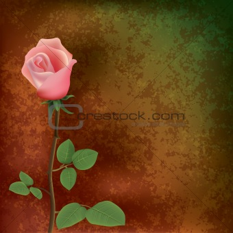 abstract grunge floral background with rose