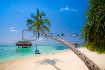 Beautiful tropical beach scenery
