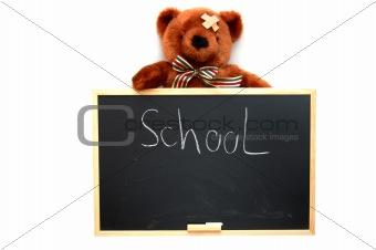 teddy and blackboard