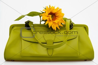 Green sixties style bag