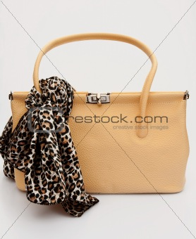 Sixties bag with leopard patterned scarf