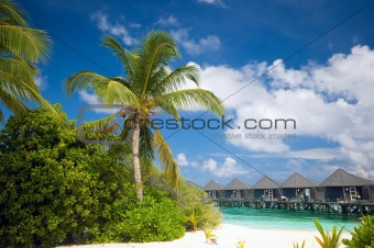Tropical Beach with view to water bungalows
