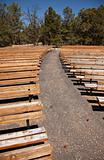 Outdoor Wooden Amphitheater Seating and Pine Cones, Pine Needles and Trees Abstract.
