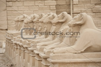 Ram headed sphinxes at Karnak Temple
