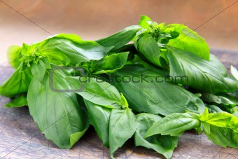 green fresh basil in a wooden bowl