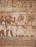 Egyptian hieroglyphics on a temple wall