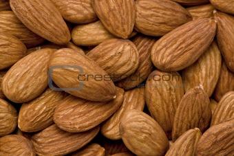Almonds (Prunus amygdalus)