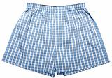 Blue plaid male undershorts