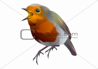 orange and gray vector bird