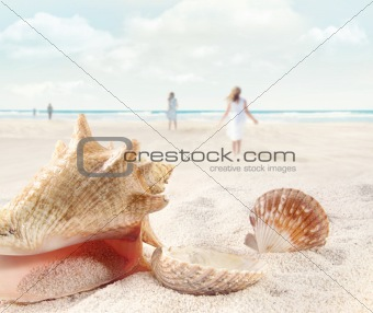 Beach scene with people walking and seashells