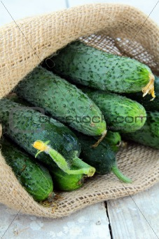 cucumbers in a linen bag on a wooden table