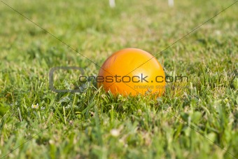 croquet ball