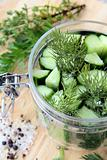cucumbers in the jar with dill salt and pepper on the table