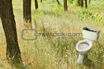 Forest landscape: the old dirty toilet among the trees