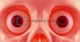 Skeleton Eyes